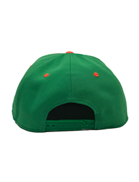 Under Armour Retro Baseball Snapback Hat